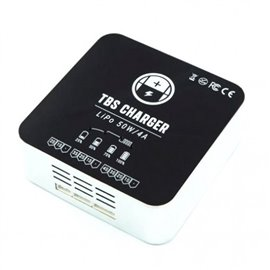 TBS - Battery Charger 50W/4A